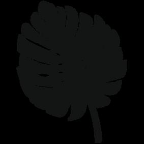 Leaf Image 6.png