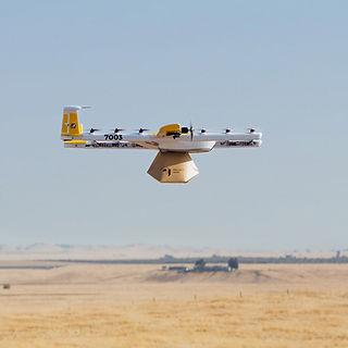 Wing-in-flight-portrait-view.jpg