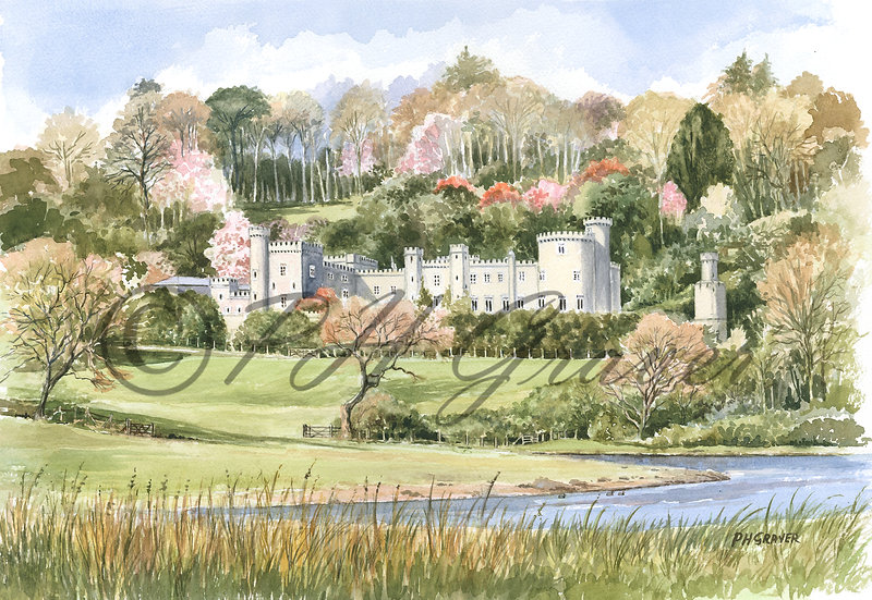 WS#04 Caerhays Castle