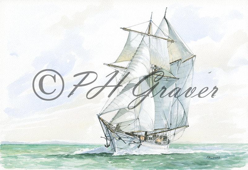 TS#05 The Belle Poule