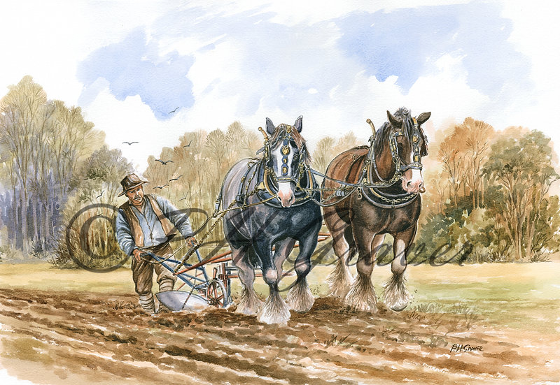 HAF#16 The Ploughing Team