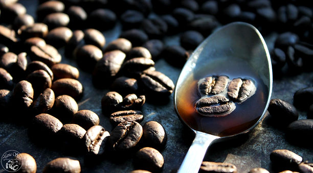 Fairtrade Puro Noble Coffee Beans