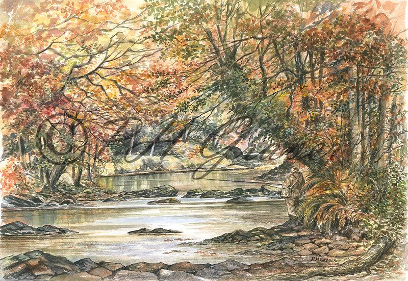 WRS#11 Fishing On The River Dart
