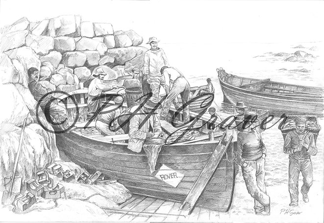 OC#7 Unloading Pilchards At Sennen Cove Pencil Drawing