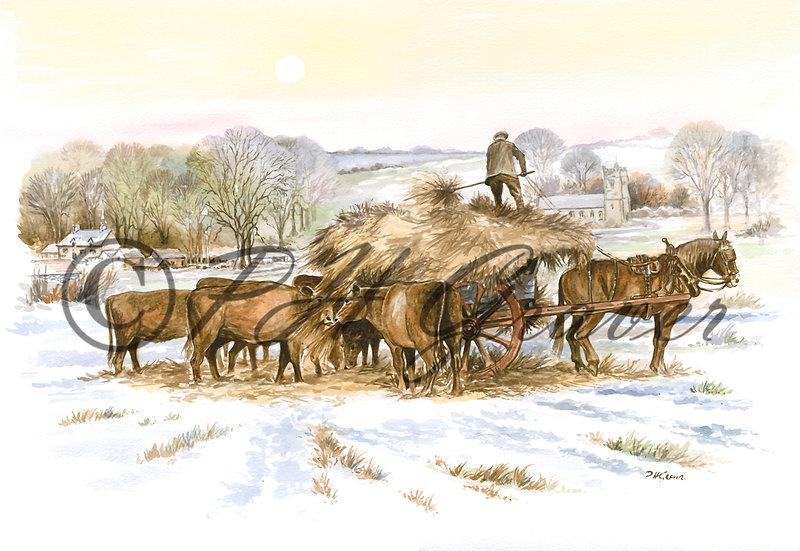 HAF#20 Winter Feeding