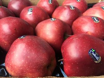 La mela rossa stark