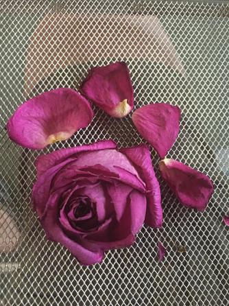 rose essiccate sul tavolo dei migliori hotel