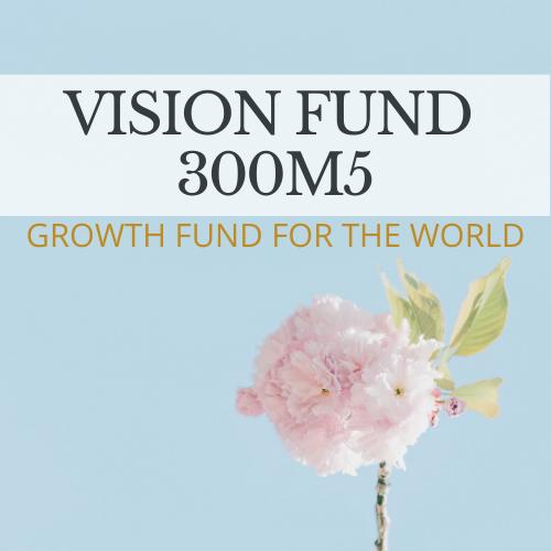 VISION 300M5