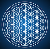 flower of life 1.png