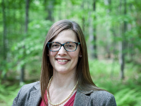 SaveHudsonNH's Lawyer, Amy Manzelli, Sends Another Letter to Planning Board