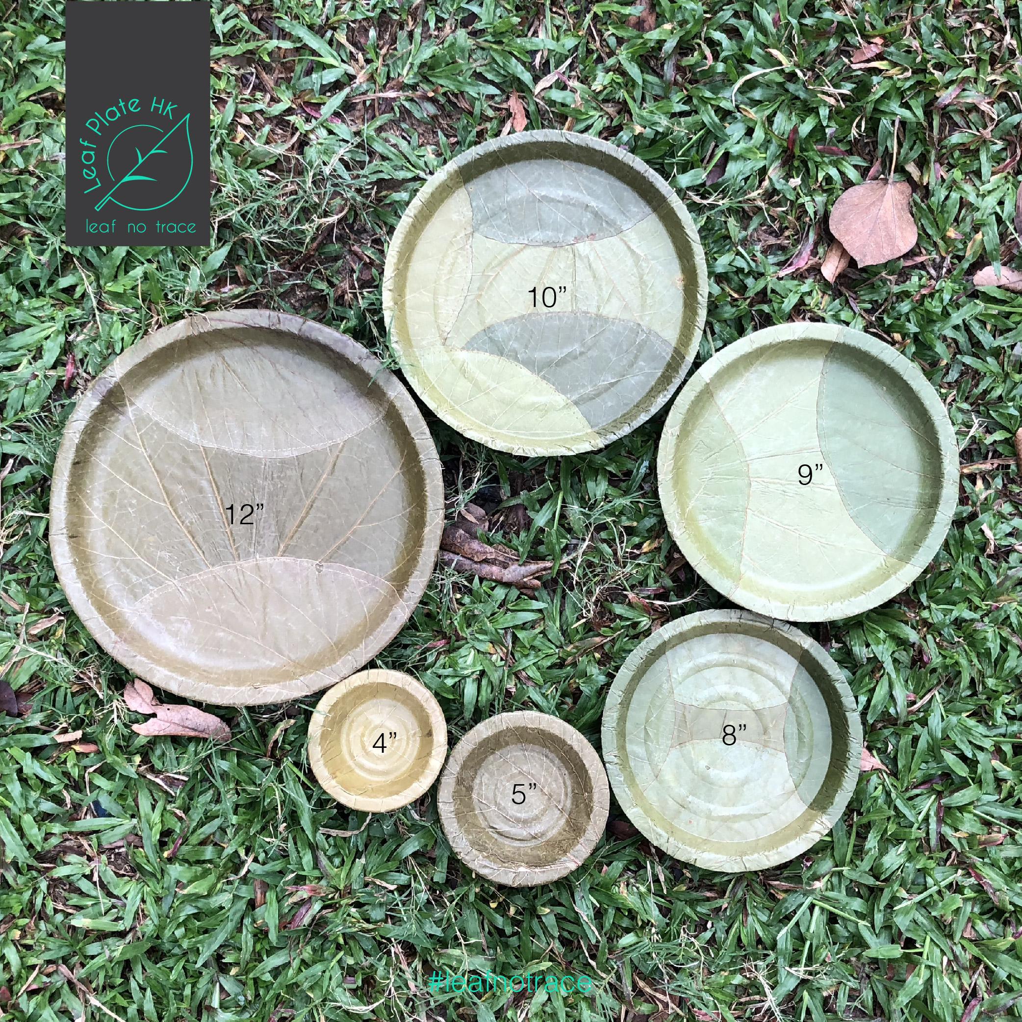 Leaf plate_side-09-05
