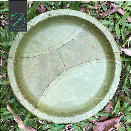 "9"" Leaf plates (Set of 10pcs)"