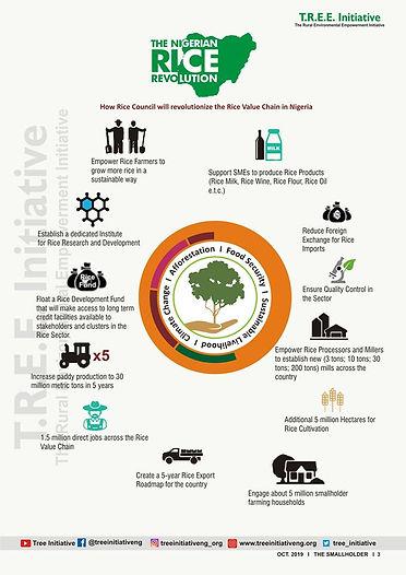 Rice Infograph.jpg