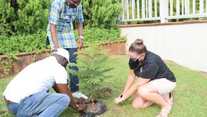 National Arbor Day Celebration in Nigeria