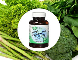 World Organic Mega Chlorophyll
