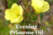 Evening Primrose Oil.jpg