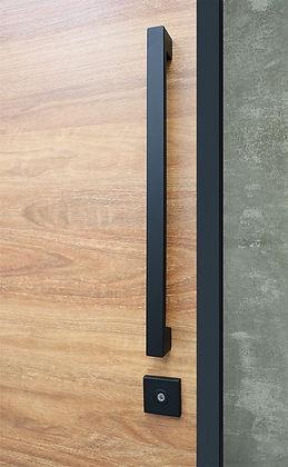 main door1.jpg
