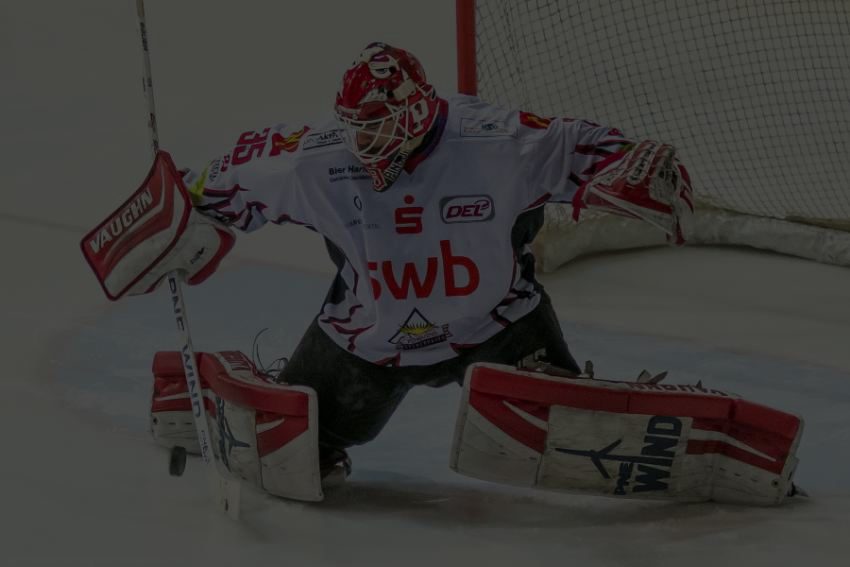 websitegoalie