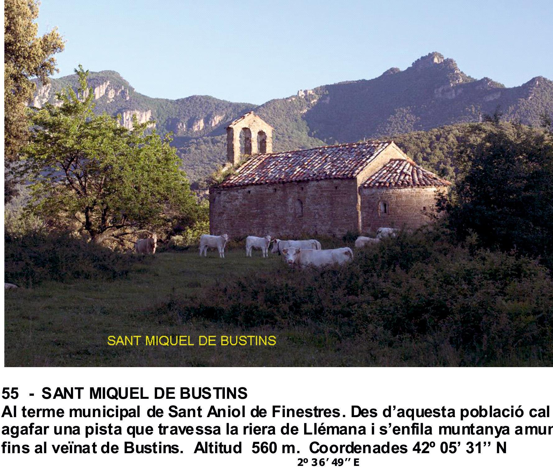 55  -  SANT MIQUEL DE BUSTINS