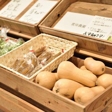 静岡県の新鮮お野菜