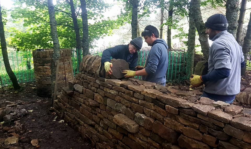 Dry stone walling courses cumbria
