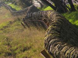 Uniformed Boundary Walls