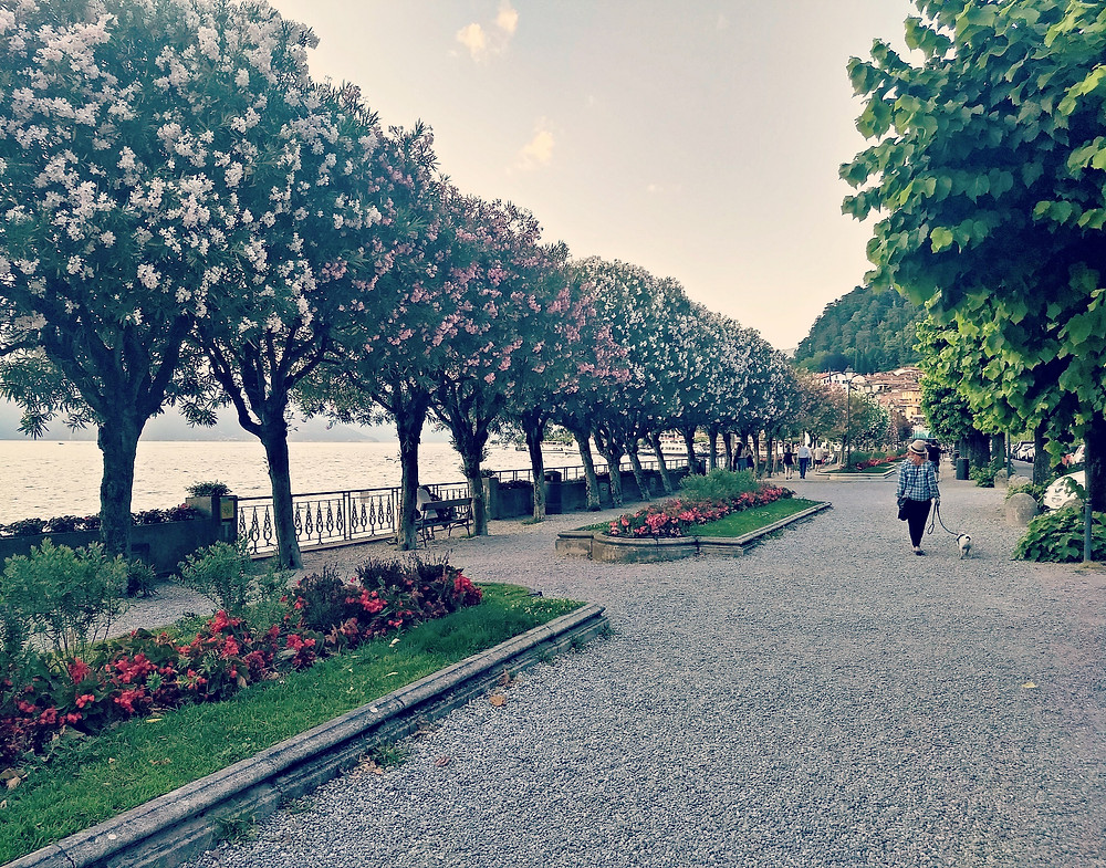 Flowers bloom everywhere in Bellagio on Lake Como.