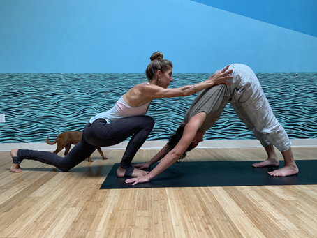 What is Yoga with Scoliosis?