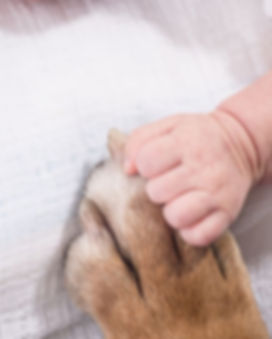 dziecko-pies_8ea8.jpg