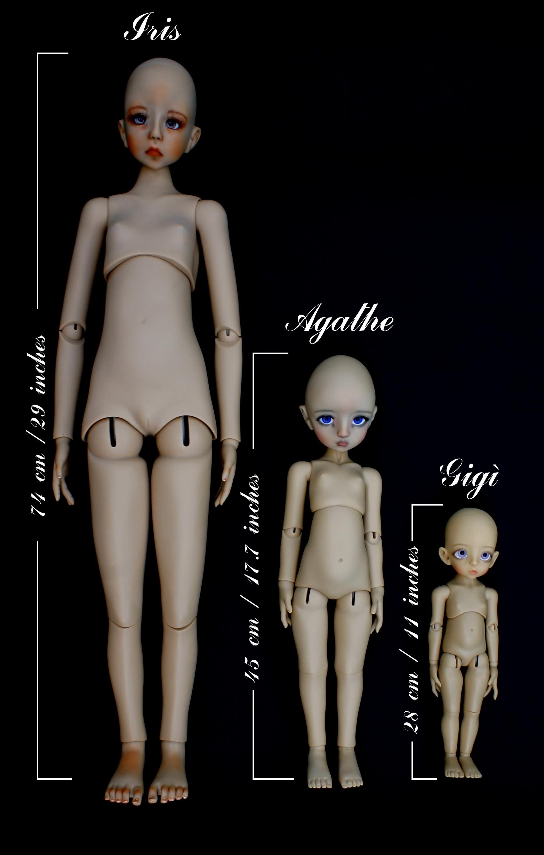 Iris/Rose/Lily body