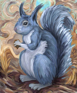 Albert's Grey Squirrel