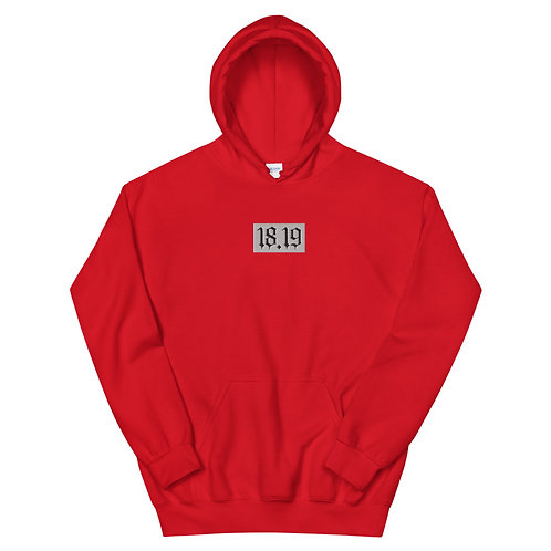 """""""18.19"""" Embroidered Patch Unisex Hoodie"""