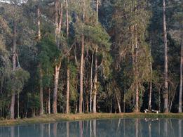 vilarejo-cachoeira-3-1.png