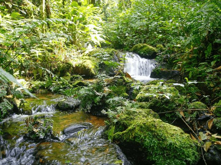 vilarejo-cachoeira-6-1.png