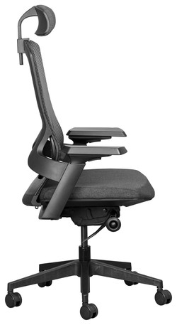 Firefly Executive with Headrest
