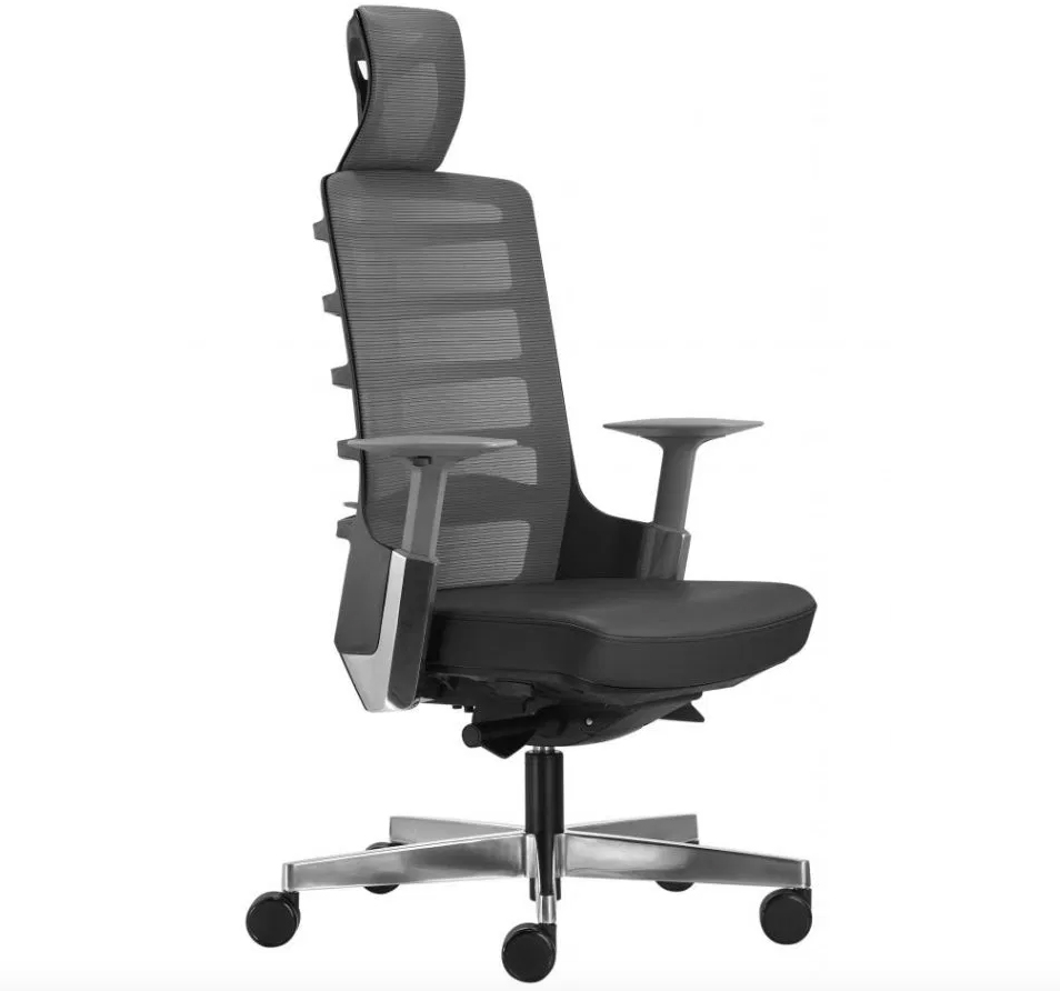 Merryfair Spinelly Ergonomical Chair