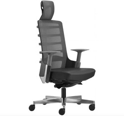 Merryfair Spinelly Ergonomical Chair