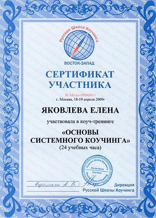 Сертификат системный коучинг.jpg