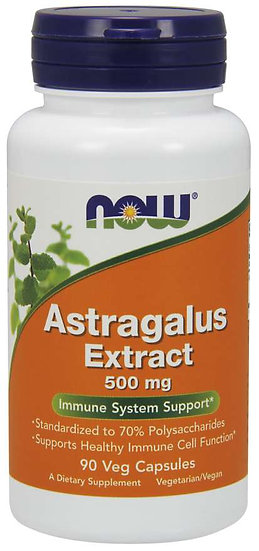 Astragalus Extract 500 mg (90 Veg Caps)