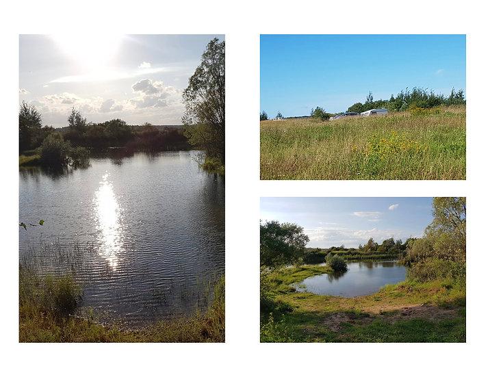 Новгородская обл. 18 Га красивое место с озером