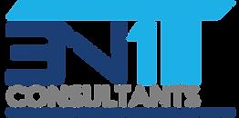 3N1 IT Consultants Logo