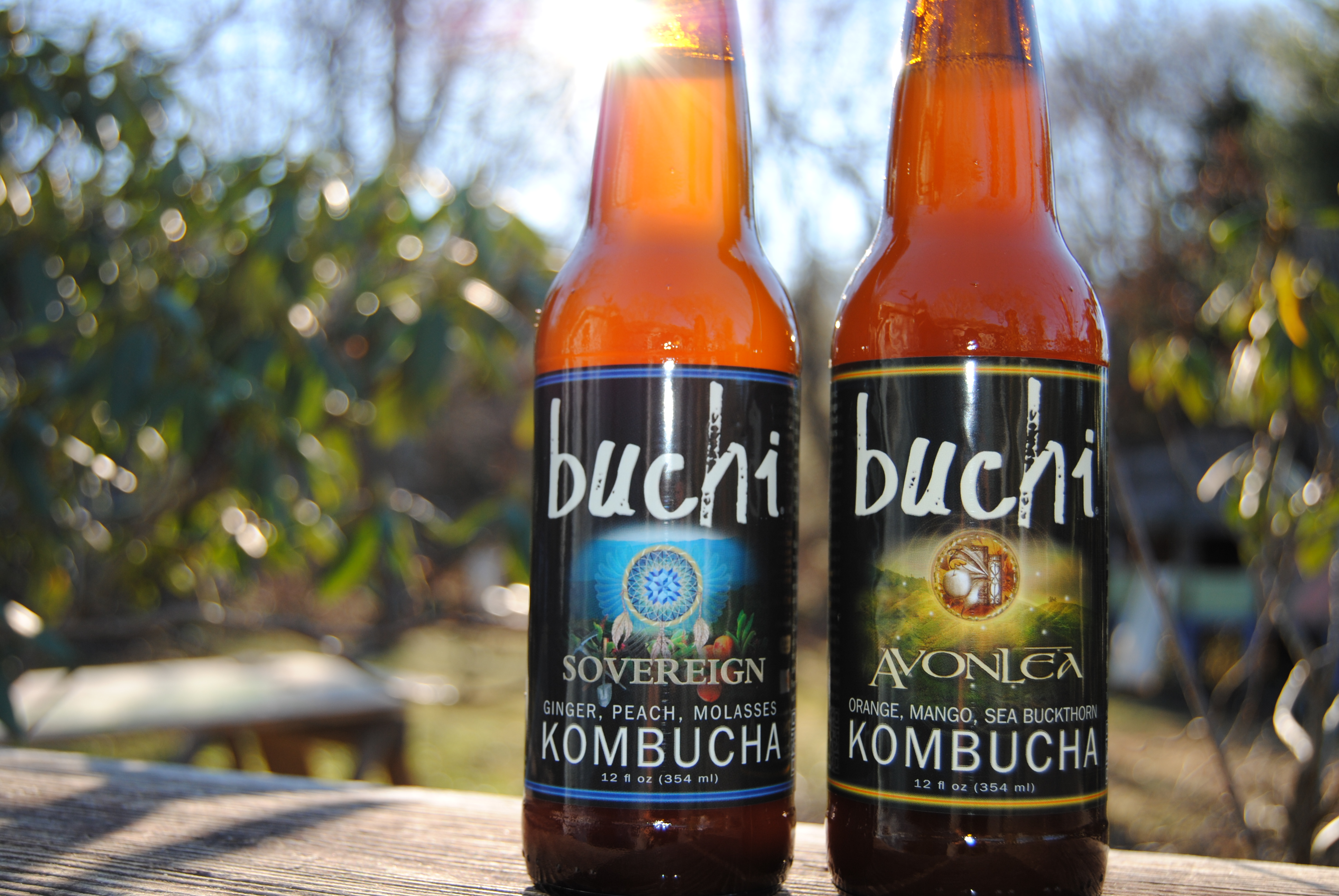 Buchi-picnic-shot