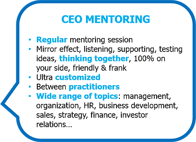 CEO mentoring.png