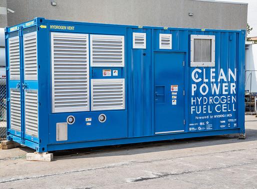 Fuel cells or fool cells?