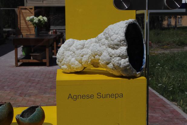 Agnese Sunepa