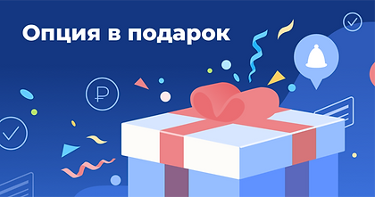 подарок5 опция.png