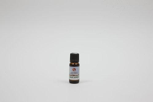שמן אקליפטוס רדיאטה טהור