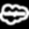 Salesforce Cloud Icon