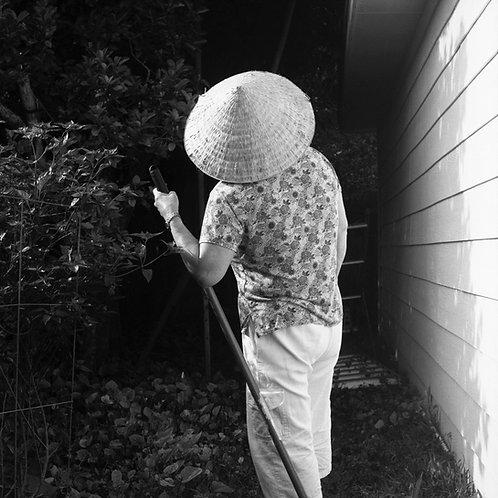 In the Garden, 2019