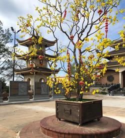 Vietnamese Buddhist Center 3